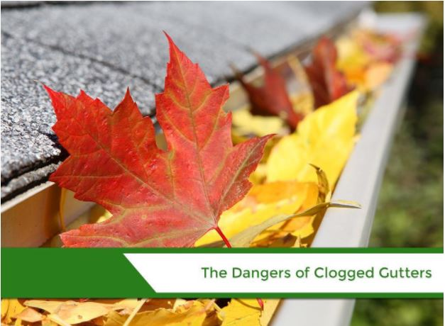 The Dangers of Clogged Gutters