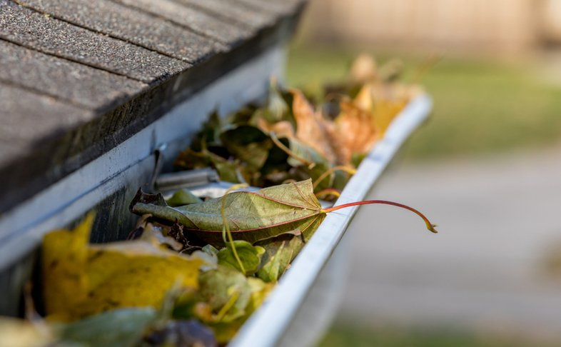 a dirty gutter filled with leaves
